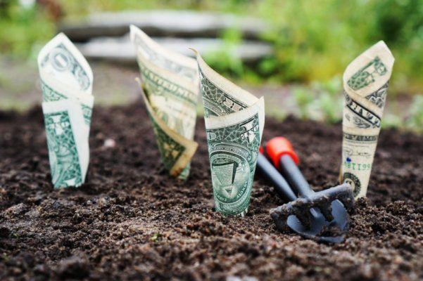 Assicurare l'azienda: costo o investimento?