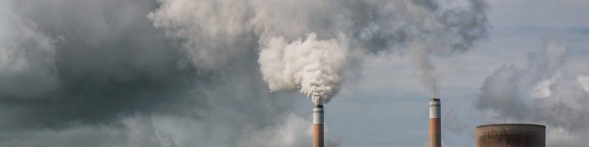 Il danno ambientale: chi inquina paga
